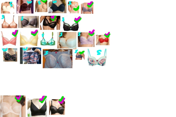 """The letters """"S"""" or """"W"""" indicate whether the bra is from the spring/summer or autumn/winter seasons. Green check marks mean I have paid for the bra, purple check marks mean I have received the bra and now wear it. I forgot to put PL Black in the document! Whoops!"""